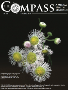 compass_2016_cover